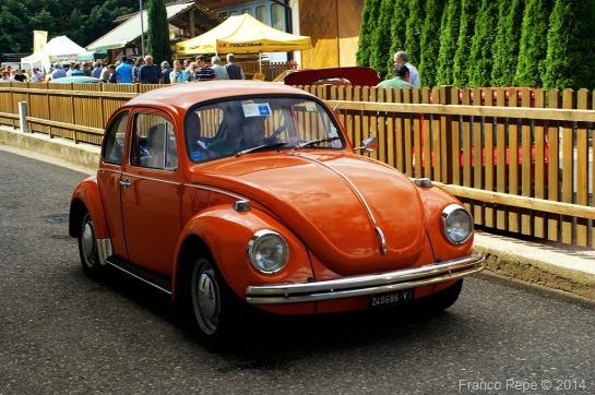 VW-Maggiolone-Senale-BZ-2-agosto-2014-1.jpg